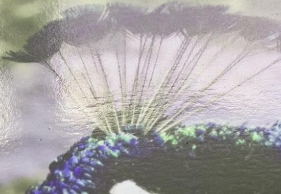 Изображение, отпечатанное на глянцевой бумаге, часто невозможно разглядеть из-за бликов света