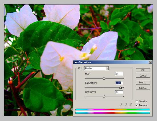 Обработка фото. Повышение резкости 1