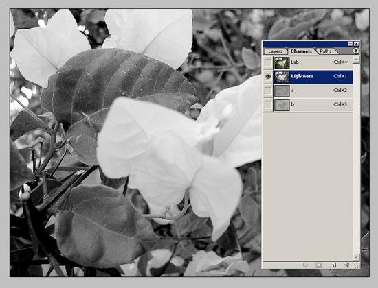 Обработка фото. Повышение резкости 2