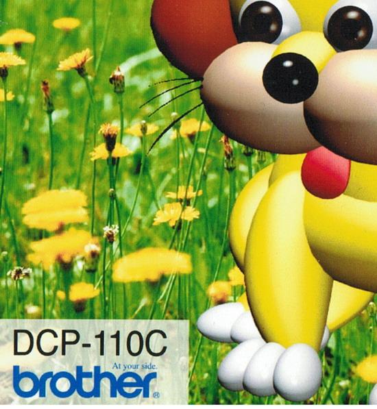 Пример отсканированного изображения. Источник – фотография, отпечатанная на струйном принтере