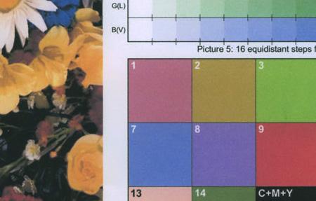 Canon PIXMA МP530: текст и графика 1